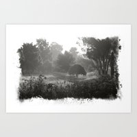 Foggy Path Art Print