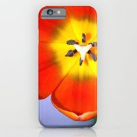 iPhone & iPod Case featuring Dazzling Orange Tulip by Serenity Photography