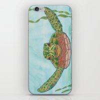 Ripley Sea Turtle iPhone & iPod Skin