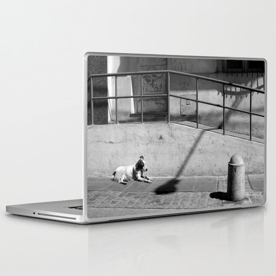 Stray Dog Laptop & iPad Skin