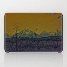 #82 iPad Case