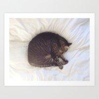 Furball Art Print