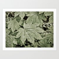 Leaves On The Misty Moun… Art Print
