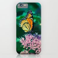 Viceroy Butterfly iPhone 6 Slim Case