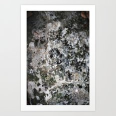 Weathered Rock  Art Print