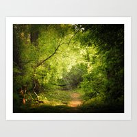 The Secret Path Art Print