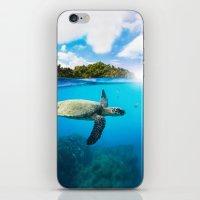 Tropical Paradise iPhone & iPod Skin