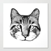 Strabismus Cat Canvas Print