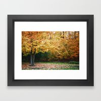 Beautiful Fall Trees Framed Art Print