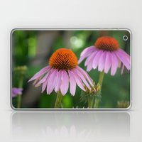 Cone Flowers Laptop & iPad Skin