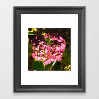 Late Fall Framed Art Print