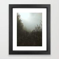 Foggy Morning Vineyard Framed Art Print