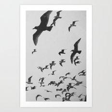 Flock 2 Art Print