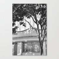 Frames Of Timber Canvas Print
