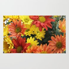 Red, yellow and orange colorful autumn daisy flowers. floral photography. Rug