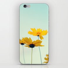 Beautiful summer  iPhone & iPod Skin