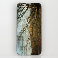 Branches  iPhone & iPod Skin