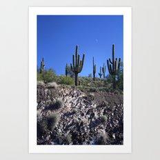 Desert Moon Art Print