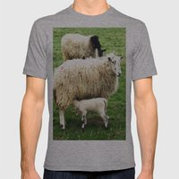 We Like Sheep Mens Fitted Tee Athletic Grey SMALL