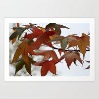 Holding Onto Autumn Art Print