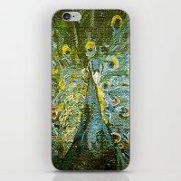Green Peacock  iPhone & iPod Skin