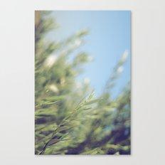 Fresh Air Canvas Print