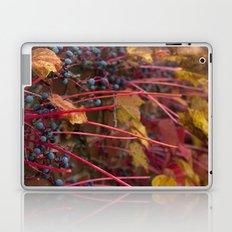 Berries and Leaves Laptop & iPad Skin