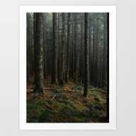 Art Print featuring Gorge Woods by Kevin Russ