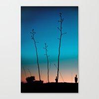 Arizona Desert Sunset  Canvas Print