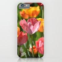 Brilliant Spring iPhone 6 Slim Case