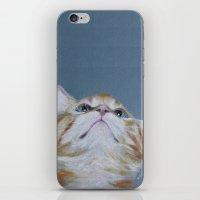 Juno. The Bird Catcher. Pastel Kitten iPhone & iPod Skin