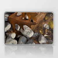 Stones And Leaves  Laptop & iPad Skin