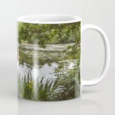 Water-lilies on a lake. Lynford, Norfolk, UK. Mug