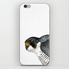Peregrine Falcon iPhone & iPod Skin