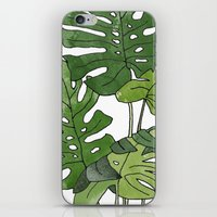 Philodendron Selloum iPhone & iPod Skin