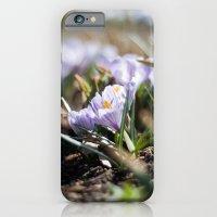 Spring Light iPhone 6 Slim Case