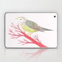 Little Green Bird Laptop & iPad Skin