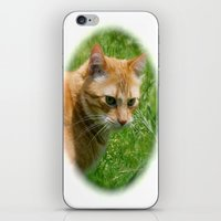 Max iPhone & iPod Skin