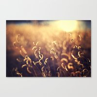 For The Dream Canvas Print