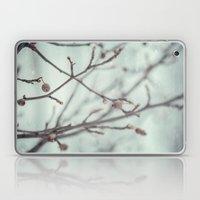 Wintermint. Laptop & iPad Skin