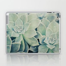 Botanical -- Jade, Mother-of-pearl, Ghost Plant Leaves Laptop & iPad Skin
