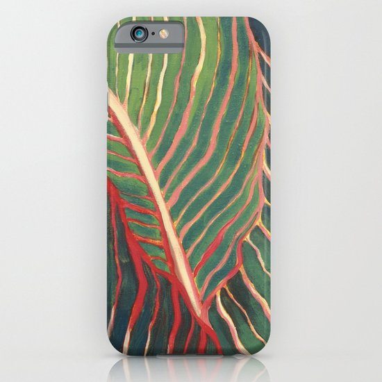 Canna Leaves iPhone & iPod Case