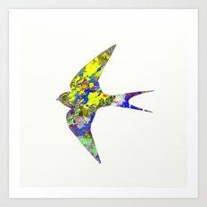 Bird Of Colour Art Print