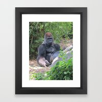 Gorilla Says Framed Art Print