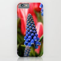 Grape Hyacinth And Tulip… iPhone 6 Slim Case
