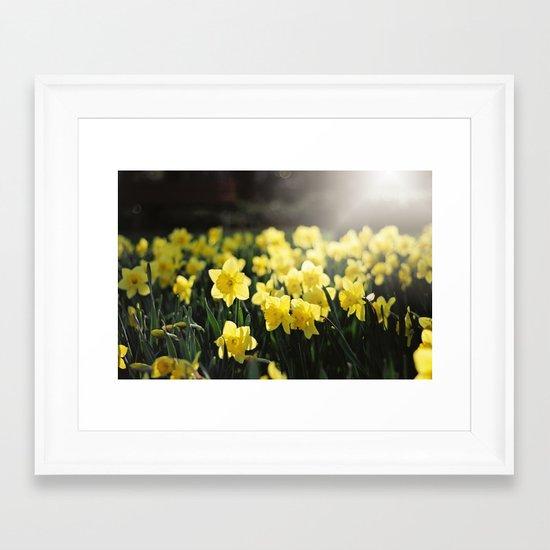 Spring light Framed Art Print