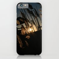 Sunset In The Fall iPhone 6 Slim Case