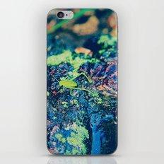Grasshopper iPhone & iPod Skin