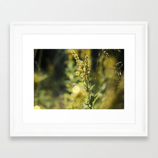 Mountain Meadows 02 Framed Art Print