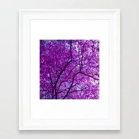 purple tree XXXI Framed Art Print